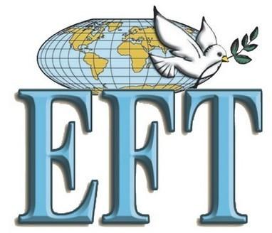 Stage de Formation : Praticien en EFT niveaux 1 et 2 | coaching harmonique | violences soins | Scoop.it