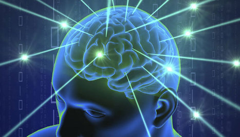 How brain remains stable during learning process | Entretiens Professionnels | Scoop.it