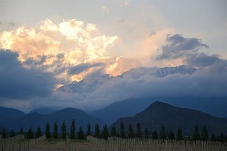 Chilean Malbec 'no threat' to Argentina | Autour du vin | Scoop.it