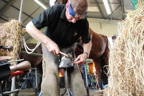 Stoneleigh prepares to host the International Team Horseshoeing Championships | Hoofcare and Lameness | Scoop.it