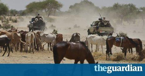 Boko Haram murder 24 at village funeral – mostly women | The Pulp Ark Gazette | Scoop.it