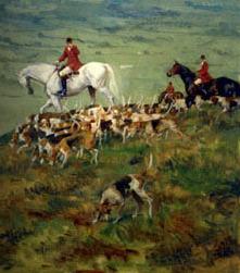 Dog & Horse Fine Art and Portraiture, Charleston, SC | equine travel | Scoop.it