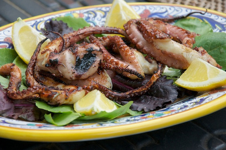 Polpo alla griglia  - Grilled Baby Octopus | Le Marche and Food | Scoop.it