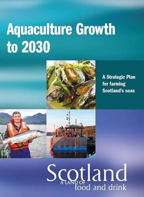 New Strategy to Double Size of Scotland's £1.8 billion Aquaculture Sector | Aquaculture Directory | Aquaculture Directory | Scoop.it