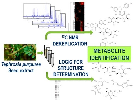 Exploiting the Complementarity between Dereplication and Computer-Assisted Structure Elucidation for the Chemical Profiling of Natural Cosmetic Ingredients: Tephrosia purpurea as a Case Study | Discovery of Marine Natural Products | Scoop.it