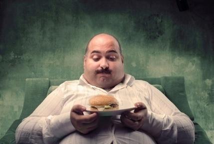 Why Shouldn't We Eat Junk Food - Livemans | Junk Food in Schools  Catalina.A Joaquin.C Nassar.H | Scoop.it
