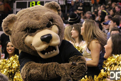 Meet the mascot: The Grizz | Mascots | Scoop.it