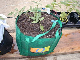 Global Buckets: Grow Bags | Vertical Farm - Food Factory | Scoop.it