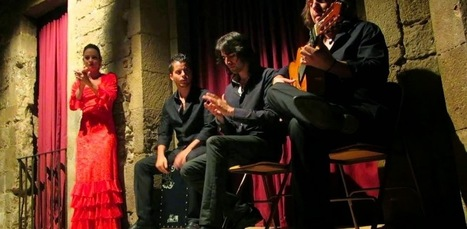 Palau Dalmases - Flamenco Night | Barcelona City Travel - Barcelona Trip Advisor And Tips - Barcelona Guide | Barcelona City Travel Guide | Scoop.it