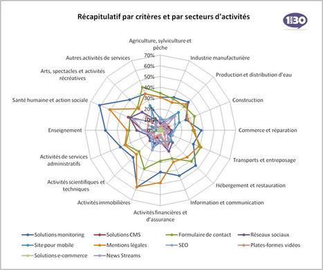 Quel est l'efficacité des sites professionnels français? | Institut de l'Inbound Marketing | Scoop.it