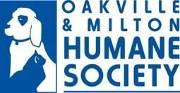 Community Pay it Forward Campaign – Oakville & Milton Humane ... | Animals R Us | Scoop.it