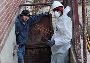 USA NEWS: Sandy cleanup: Workers who are sent into mold-infested, storm-damaged basements lack proper equipment, gear or training | Asbestos and Mesothelioma World News | Scoop.it