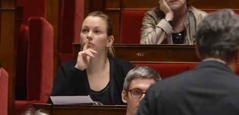 Comment la loi Lemaire pourrait réformer la loi Informatique et Libertés | Privacy | Scoop.it