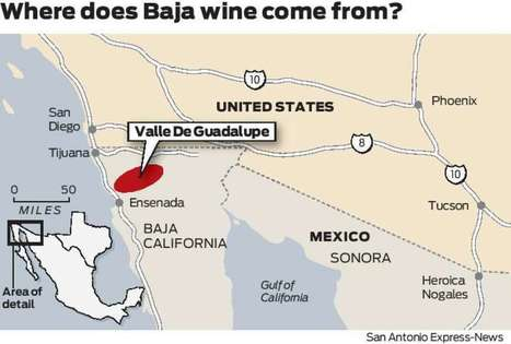 Is Baja California the next Napa? | Baja California | Scoop.it
