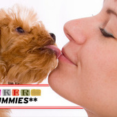 PR Dummies: At Least Your Pets Love You, You Horribly Lonely Loser | Public Relations & Social Media Insight | Scoop.it