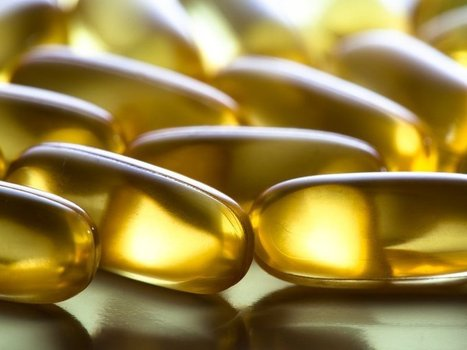 Fish Oil Could (One Day) Come From Plants | Fish in Demand -Aquaculture-and-More by Youmanitas | Scoop.it
