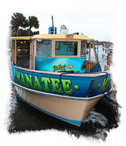 Manatee Scenic Cruises - See Daytona Beach | Florida SunStream Vacation | Scoop.it