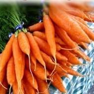 Winter Vegetable Seeds, Vegetable seeds online india, Herb seeds online, Buy seeds online india | Buy flower seeds online, Flower seeds online, Garden seeds, Flower seeds, Herb seeds | Scoop.it