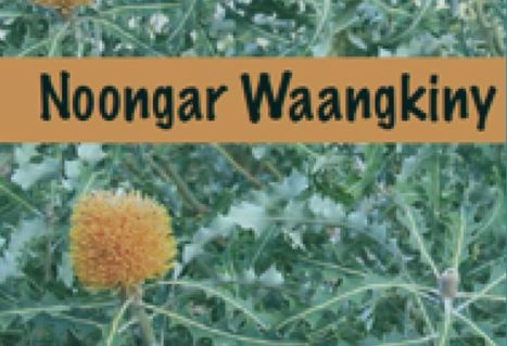 Noongar Learners Guide – Noongar Boodjar Language Cultural Aboriginal Corporation | Aboriginal and Torres Strait Islander histories and culture | Scoop.it
