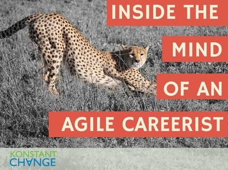 10 Secrets of an Agile Careerist | Digital Marketing Strategy | Scoop.it