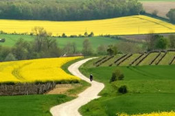 Cycling Charente   Bike routes, accessories and accommodation   Charming guest mansion in Charente   Scoop.it