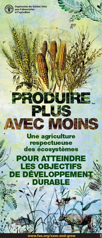 [Audio] [Liens] Documents FAO sur l'approche écosystémique de l'agriculture | Insect Archive | Scoop.it