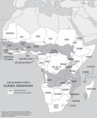 La Chine est-elle un acteur majeur de l'accaparement des terres en Afrique? | Daraja.net | Scoop.it