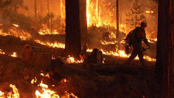 Rim fire now the fourth-largest blaze in California history | Geography is my World | Scoop.it