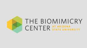 Biomimicry Center Emulates Nature to Solve Design Challenges | Biomimétisme Biomimicry | Scoop.it