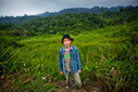 Indonesian activist wins Goldman Prize for fighting palm oil, deforestation   Indonesian Language and Culture   Scoop.it