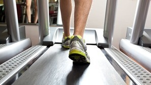 Physical Exercise Beefs Up the Brain - BrainFacts.org | Health and Wellness | Scoop.it