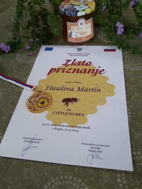 Zlati Tine | Družinski časopis | Scoop.it