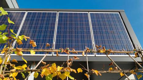 Le secteur privé milite pour un cadre européen tourné vers les renouvelables   Innovative Financing & Climate Change   Scoop.it