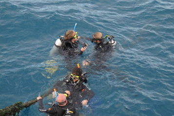 East coast Australia offers the Great Barrier Reef - Toronto Sun | Agnes Water Adventures through time | Scoop.it