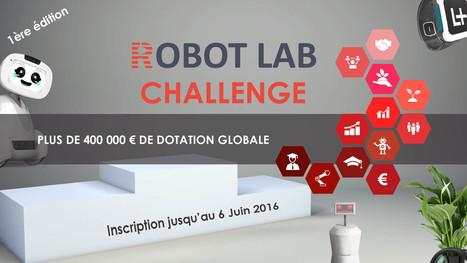 Concours ROBOT LAB CHALLENGE | Une nouvelle civilisation de Robots | Scoop.it