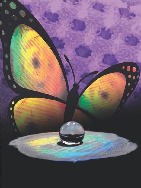 Découverte d'une nouvelle méthode pour reproduire la couleur et la texture des ailes de papillons | EntomoNews | Scoop.it