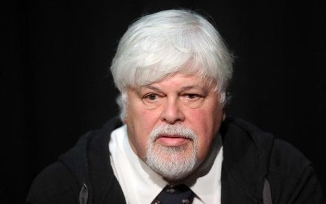 A man adrift: Paul Watson marks a year at sea   All about water, the oceans, environmental issues   Scoop.it