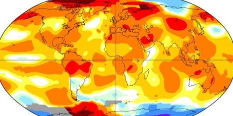 July Was The Hottest Month Ever Recorded | The EcoPlum Daily | Scoop.it