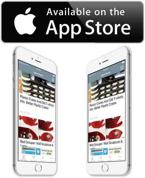 Recyclart iOS iPhone/iPad App is Available   1001 Recycling Ideas !   Scoop.it
