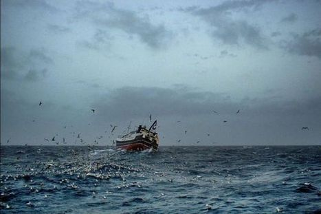Fishermen claim marine plan could destroy their industry in Scotland - Herald Scotland | Sustainability At It's Finest | Scoop.it