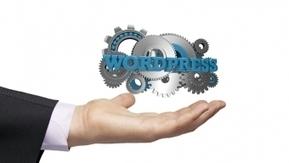 Créer un site Wordpress: quel budget? | Webmarketing & co'm | NTIC - Médias Sociaux - Web 2.0 | Scoop.it