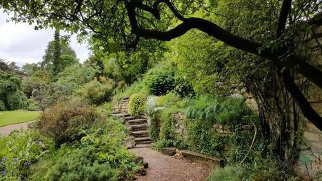 Fête de la Nature au Jardin des Plantes - Carnets de Week-Ends | Paris Culture | Scoop.it