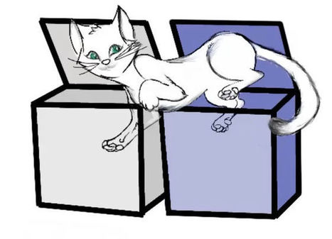 Dead or Alive, Schrödinger's Cat Can Be in 2 Boxes at Once | The virtual life | Scoop.it