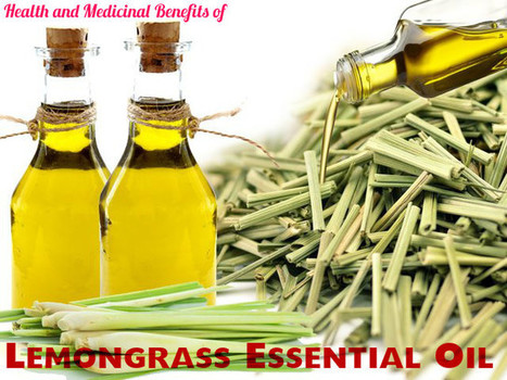 Health and Medicinal Benefits of Lemongrass Essential Oil - Stylish Walks | Beauty Fashion and Makeup Tips or Ideas | Scoop.it