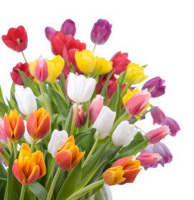 Different Types of Popular Flowers Gifts   Benjamin Landa   Scoop.it