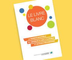 Le Livre Blanc Impression 3D de la Fédération Plasturgie et Composites   Plasturgie   Scoop.it