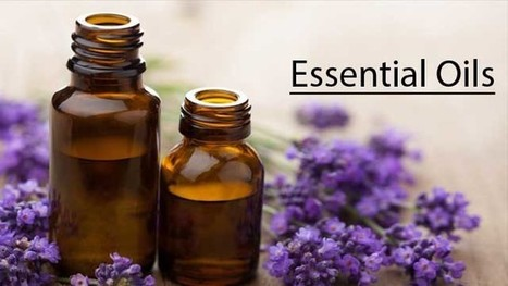 Top 5 Essential Oils for Natural Weight Loss!! | Aromaaz International - Buy Pure and Natural Essential oils at Wholesale prices | Scoop.it