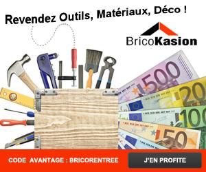 BricoKasion.com: revendre ses fins de chantiers pour payer ses impôts | BricoKasion | Scoop.it