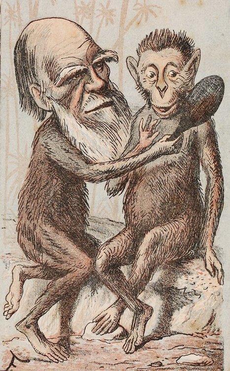 Darwin Correspondence Project | Humanidades digitales | Scoop.it