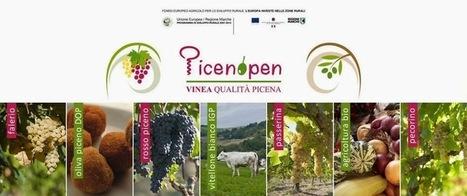AvvinatoreBloggato: Il Piceno Biologico a Offida (AP) | Vinitours | Scoop.it